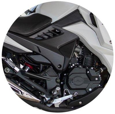 двигатель lf200-10p.jpg