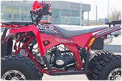 Квадроцикл WELS Thunder EVO LUX X 125