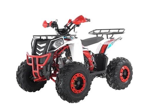 Квадроцикл WELS ATV Thunder 125 EVO