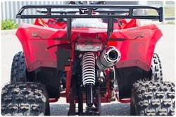 WELS Thunder EVO LUX X125