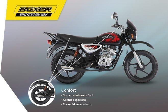 confort-caracteristicas-boxer-659-x-440.jpg